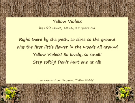 Blossom of Our Hearts...Okie, yellow violet