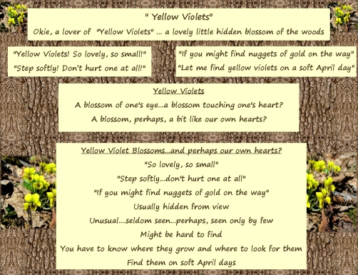 Blossom of Our Hearts okie's yellow violet poem