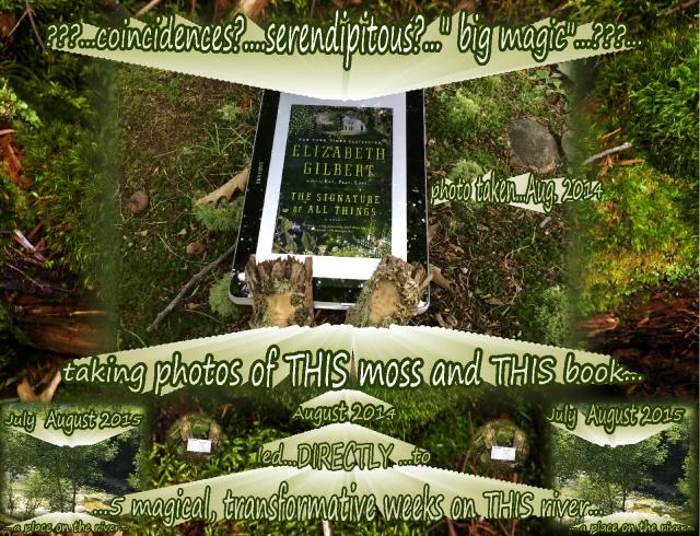 Elizabeth Gilbert books Opportunity 2