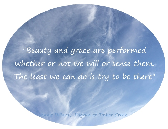 beauty and grace Annie Dillard Quote the least we can do is try to be there.2