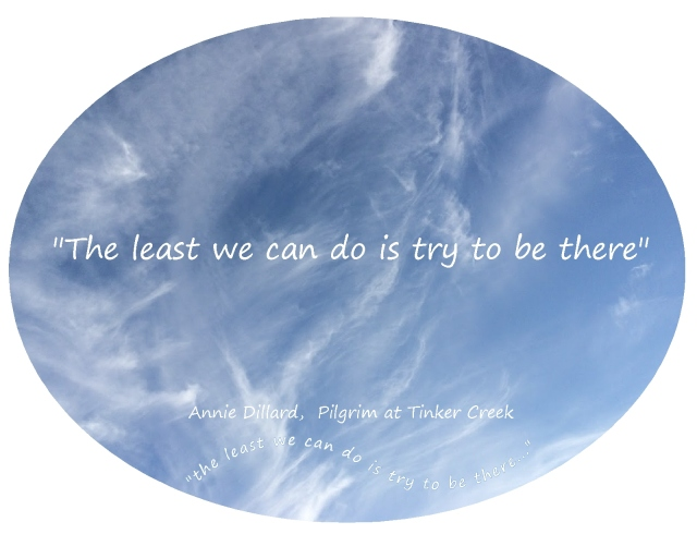 beauty and grace Annie Dillard the least we can do is try to be there