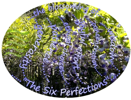 perfections the six perfections 444