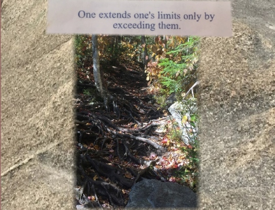 extends-ones-limits-by-exceeding-them-root-trail