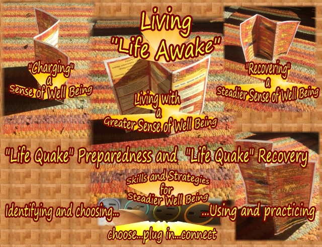 life-quake-photos-of-brochure