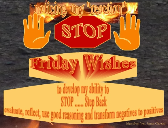 stop-step-back-evaluate-friday-wishes