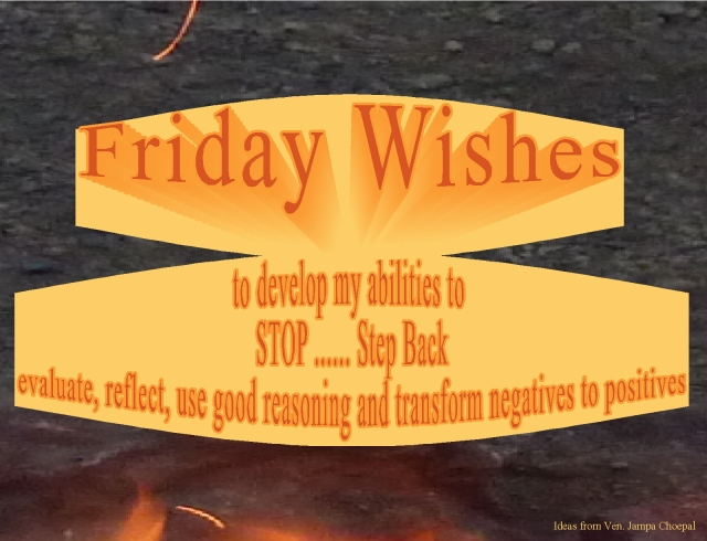 stop-step-back-evaluate-my-friday-wishes