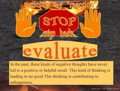 stop-step-back-evaluateevaluate