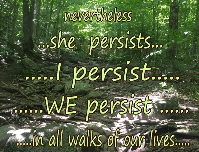 women-hhdl-nevertheless-we-she-i-persist-in-all-walks-of-our-lives